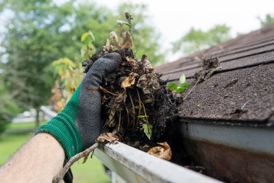 Gutter Cleaning in East Newark New Jersey
