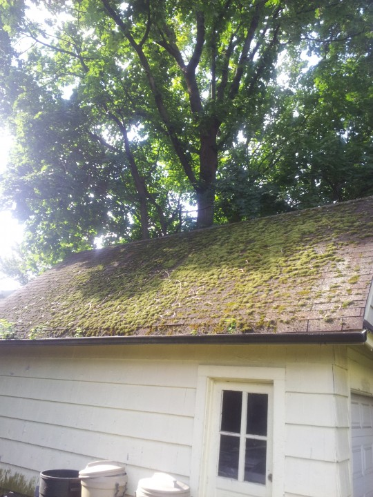 Pressure Washing the exterior walls and roof of a house in Englewood, NJ